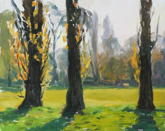 original plein air impressionist realist oil landscape painting of three poplar trees, in spring in golden evening light